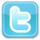 Friese Twitterdag – Fryske Twitterdei in memmetaal