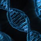 DNA dating - genetisch daten, het daten van de toekomst