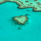 De beste baan ter wereld in the Great Barrier Reef