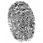 RISc (Recidive Inschattings Schalen): kans op delictgedrag?
