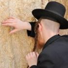 Voorkom verbod op onverdoofd ritueel slachten (sjechita)