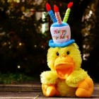 Leuke en originele verjaardagswensen