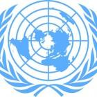 De VN; van peacekeeping tot terrorismebestrijding