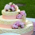 Bruiloft organiseren: De bruidstaart uitzoeken