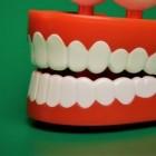 De opleiding tot tandtechnicus