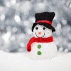 Kinderfeest met thema Noordpool (winter)