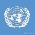 De Verenigde Naties: lidstaten en organisatie