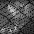 Sociale netwerken en jeugdcriminaliteit: netwerk jongeren