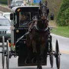 De taal van de Amish