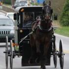 De kleding van de Amish