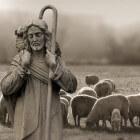 Psalm 23: David en leiderschap in moeilijke tijden