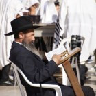 Torastudie 74: Mozes en Aharon - Exodus (4:27)/Psalm (85:11)