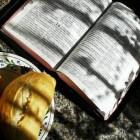 Bijbelse lijnen en motieven voor evangelisatie