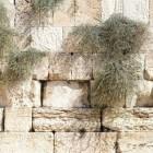 Handelingen van de apostelen: geboorte Messiaanse gemeente