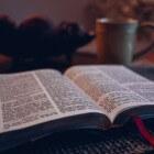 Bijbel - Psalm 1: in jonge taal