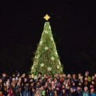 Nationale Kerstboom – National Christmas Tree in Washington