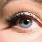 Blauwe ogen: een intelligente verschijning!