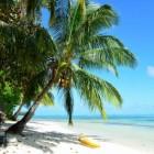 Vakantiewerk in het buitenland