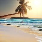 Vakantiewerk als propper