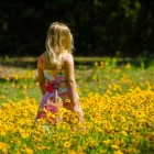 Ontwikkelingsfasen: morele ontwikkeling van kinderen