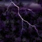 Panisch voor onweer en bliksem