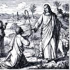 De verloren zoon: Lucas 15 vers 26