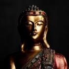 Boeddhisme, de basisbeginselen