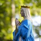 De Rooms-Katholieke Kerk en haar oorsprong