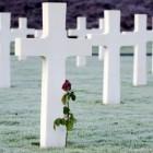 Crematie is hot en ook de dood wordt virtueel