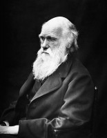 Charles Darwin in 1869 / Bron: Julia Margaret Cameron, Wikimedia Commons (Publiek domein)